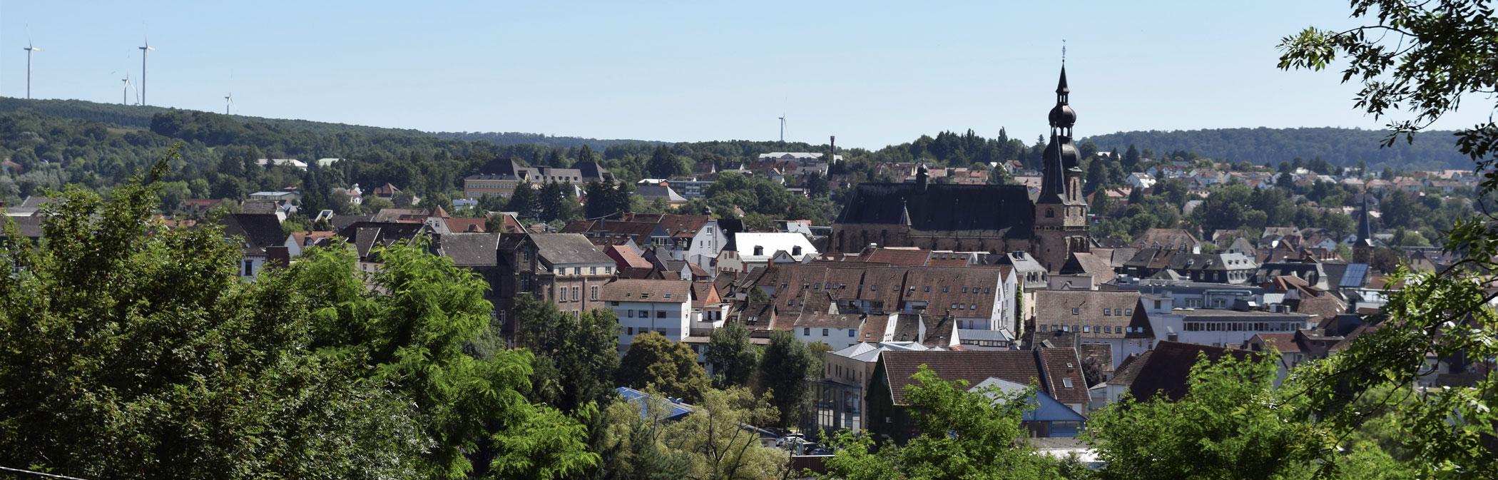 Das Panoramabild zeigt die Stadt von oben